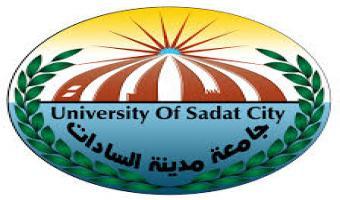 ضم الدكتور يوسف راشد إلى عضوية مجلس جامعة مدينة السادات