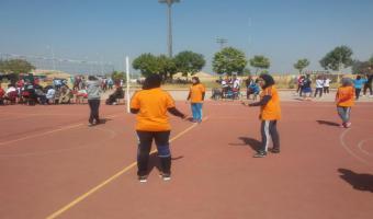 فوز فريق الكرة الطائرة بالمركز الأول بعد تغلبه على جامعة المنيا فى اللقاء الرياضى بالأقصر