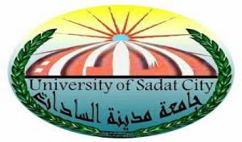 تعيين الأستاذة عبير سعد عمر قائمآ بعمل مدير إدارة الحسابات الخاصة بالجامعة