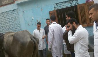 إنطلاق قافلة طبية بيطرية إلى قرية صنصفط مركز منوف